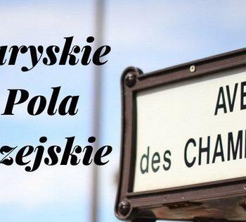 Paryskie Pola Elizejskie czyli Najpiękniejsza aleja Paryża
